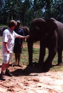 annette-elefant2